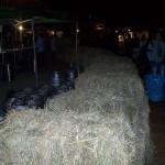 poze-oktoberfest-festival-bere-brasov-8-septembrie-2011-mare-sarbatoare (22)