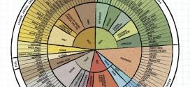 Infografic despre aromele berii