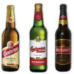 ho-piva