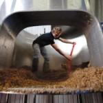 cum ajuta berea la construirea caramizilor